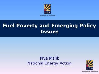 Fuel Poverty and Emerging Policy Issues