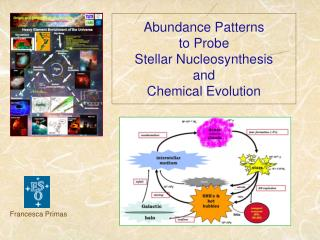 Abundance Patterns  to Probe Stellar Nucleosynthesis and    Chemical Evolution