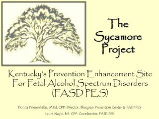 The Sycamore Project