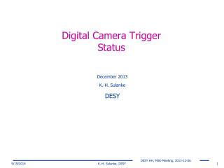 Digital Camera Trigger Status