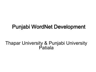 Punjabi WordNet Development