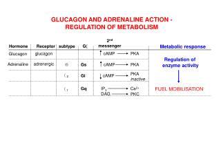 Glucagon Adrenaline