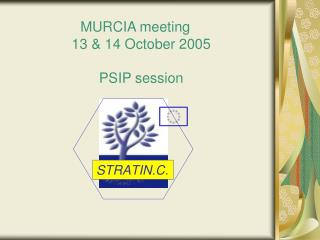 MURCIA meeting    13 & 14 October 2005 PSIP session
