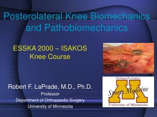 Posterolateral Knee Biomechanics and Pathobiomechanics