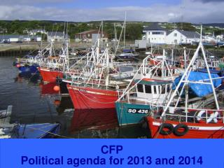 CFP  Political agenda for 2013 and 2014