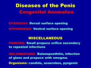 Diseases of the Penis Congenital Anomalies