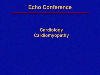 Echo Conference