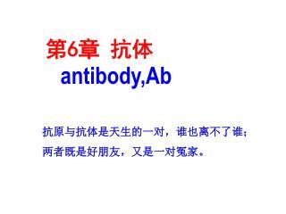 第 6 章 抗体 antibody,Ab