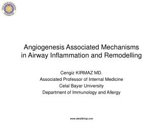 Angiogenesis Associated Mechanisms  in Airway Inflammation and Remodelling