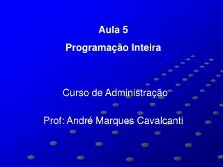 Aula 5 Programação Inteira