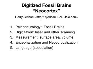 Digitized Fossil Brains �Neocortex�