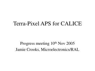 Terra-Pixel APS for CALICE