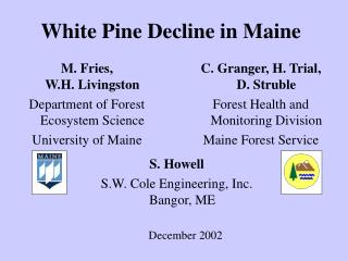 White Pine Decline in Maine