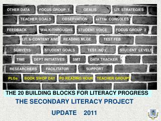 THE SECONDARY LITERACY PROJECT UPDATE    2011