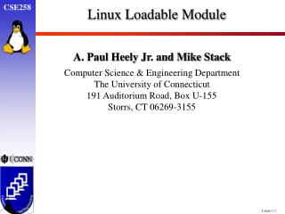 Linux Loadable Module