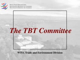 The TBT Committee