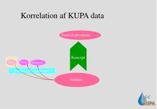 Korrelation af KUPA data