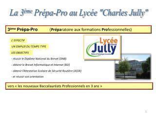 La 3 ème  Prépa-Pro au Lycée