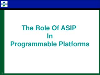 The Role Of ASIP  In Programmable Platforms