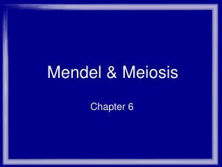 Mendel & Meiosis