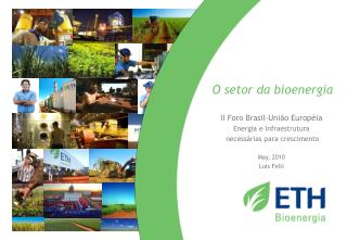 O  setor  da  bioenergia