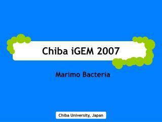 Chiba iGEM 2007