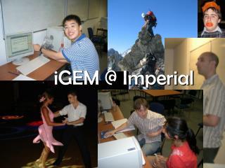 iGEM @ Imperial