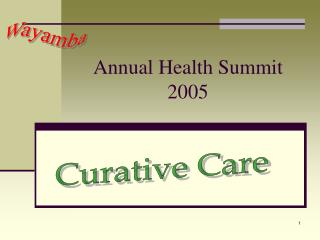 Annual Health Summit 2005