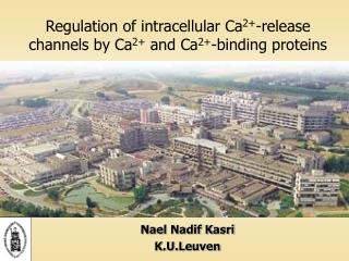 Regulation of intracellular Ca 2+ -release channels by Ca 2+  and Ca 2+ -binding proteins