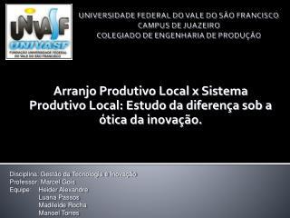 Arranjo Produtivo Local x Sistema Produtivo Local: Estudo da diferença sob a ótica da inovação.