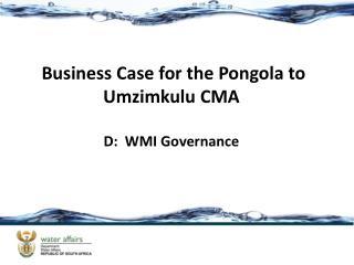 Business Case for the Pongola to  Umzimkulu  CMA D:  WMI Governance