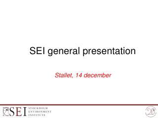 SEI general presentation