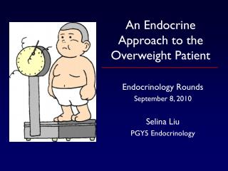 An Endocrine Approach to the Overweight Patient