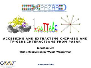 ACCESSING AND EXTRACTING CHIP-SEQ AND TF-GENE INTERACTIONS FROM PAZAR