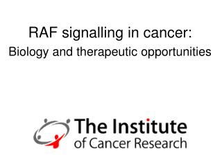 RAF signalling in cancer: Biology and therapeutic opportunities