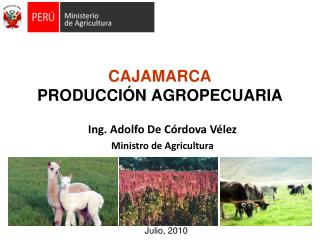 CAJAMARCA PRODUCCIÓN AGROPECUARIA