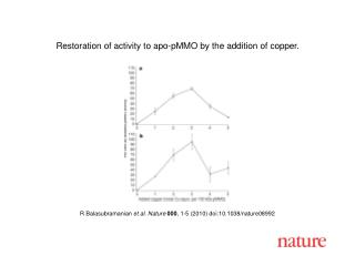 R Balasubramanian  et al .  Nature 000 ,  1 - 5  (2010) doi:10.1038/nature08 992