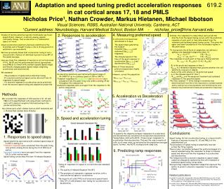 Adaptation and speed tuning predict acceleration responses  in cat cortical areas 17, 18 and PMLS