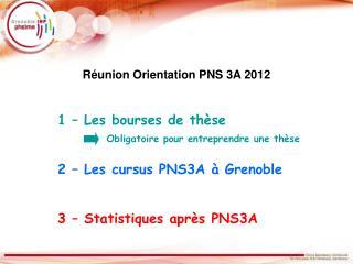 1 – Les bourses de thèse 2 – Les cursus PNS3A à Grenoble 3 – Statistiques après PNS3A