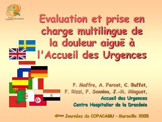 Evaluation et prise en charge multilingue de la douleur aiguë à l'Accueil des Urgences