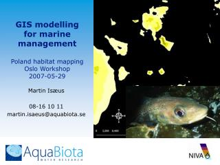 GIS modelling for marine management  Poland habitat mapping Oslo Workshop 2007-05-29