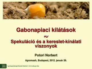 Potori Norbert