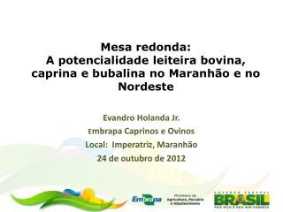 Mesa redonda:  A potencialidade leiteira bovina, caprina e bubalina no Maranhão e no Nordeste