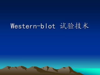 Western-blot  试验技术