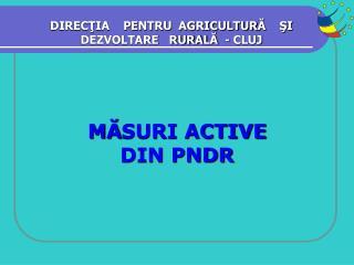 M ? SURI ACTIVE  DIN PNDR