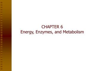 CHAPTER 6 Energy, Enzymes, and Metabolism