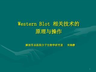 Western Blot  相关技术的 原理与操作 解放军总医院分子生物学研究室   宋海静