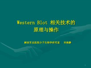 Western Blot  ????? ????? ??????????????   ???