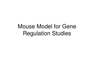 Mouse Model for Gene Regulation Studies