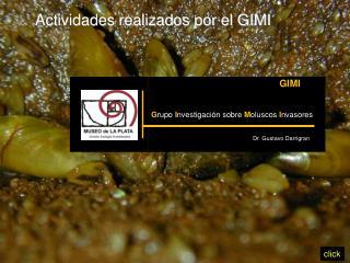Actividades realizados por el GIMI